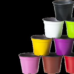 color_pots